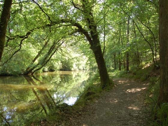 Joli Fonds de Commerce à vendre en Pays de Loire